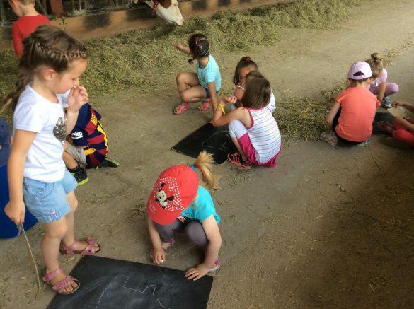 Goûter d'anniversaire à la ferme 4